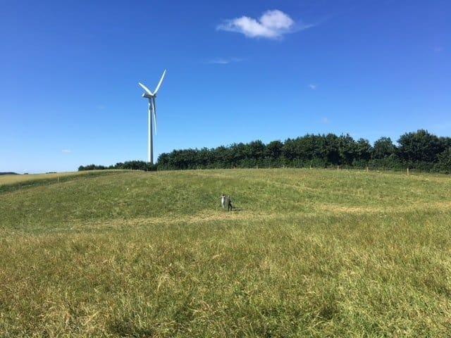 Ikke en helt almindelig vindmølle