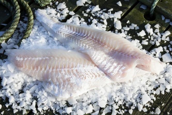 Ugens fisk: Torsk
