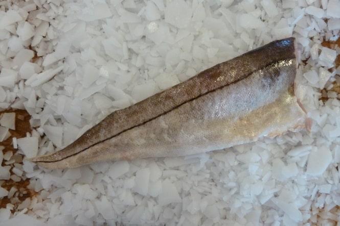 Ugens fisk: Kuller