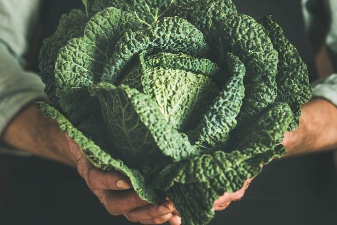 Prima frugt og grønt