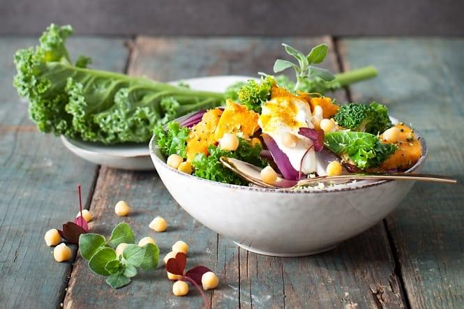 Viden Om: Proteinrige korn og bælgfrugter